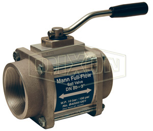 Dixon® One-Way Full Flow Ball Valve Female NPT